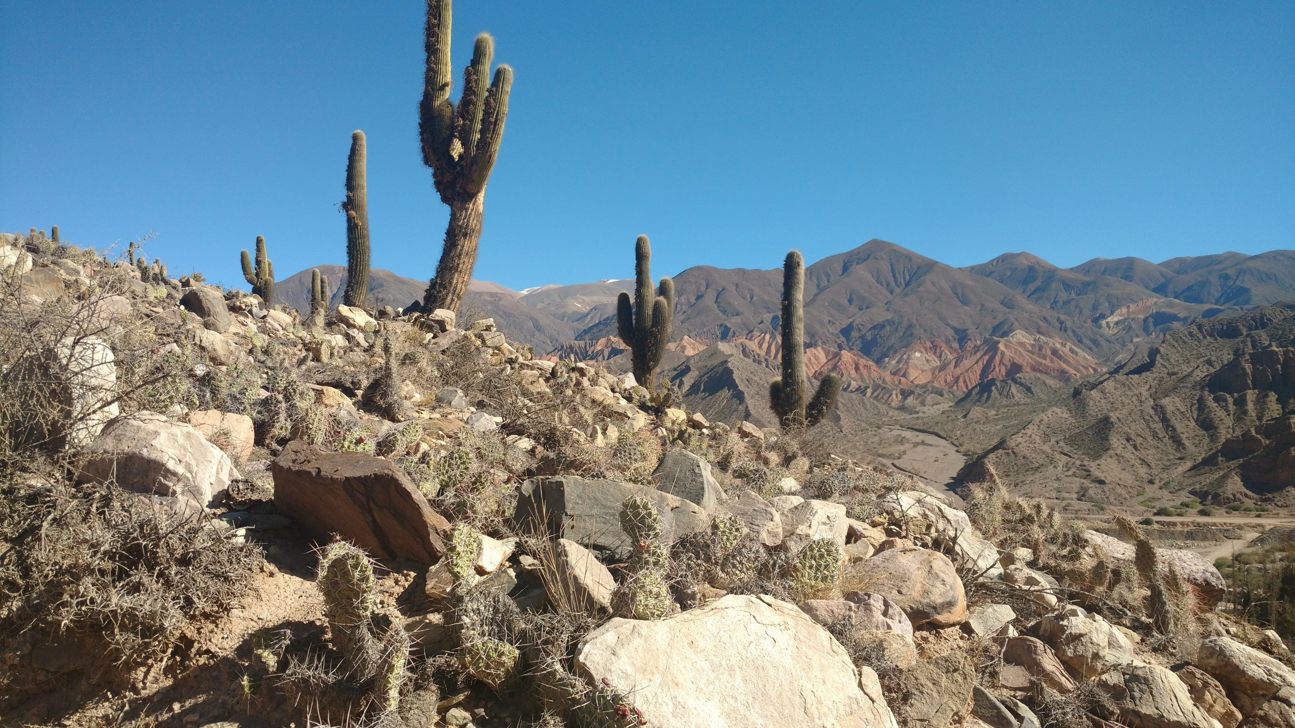 national park of Salta