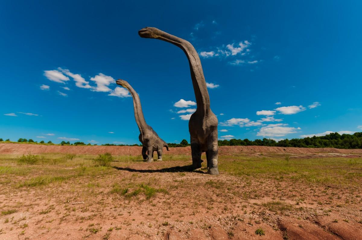 giant creature
