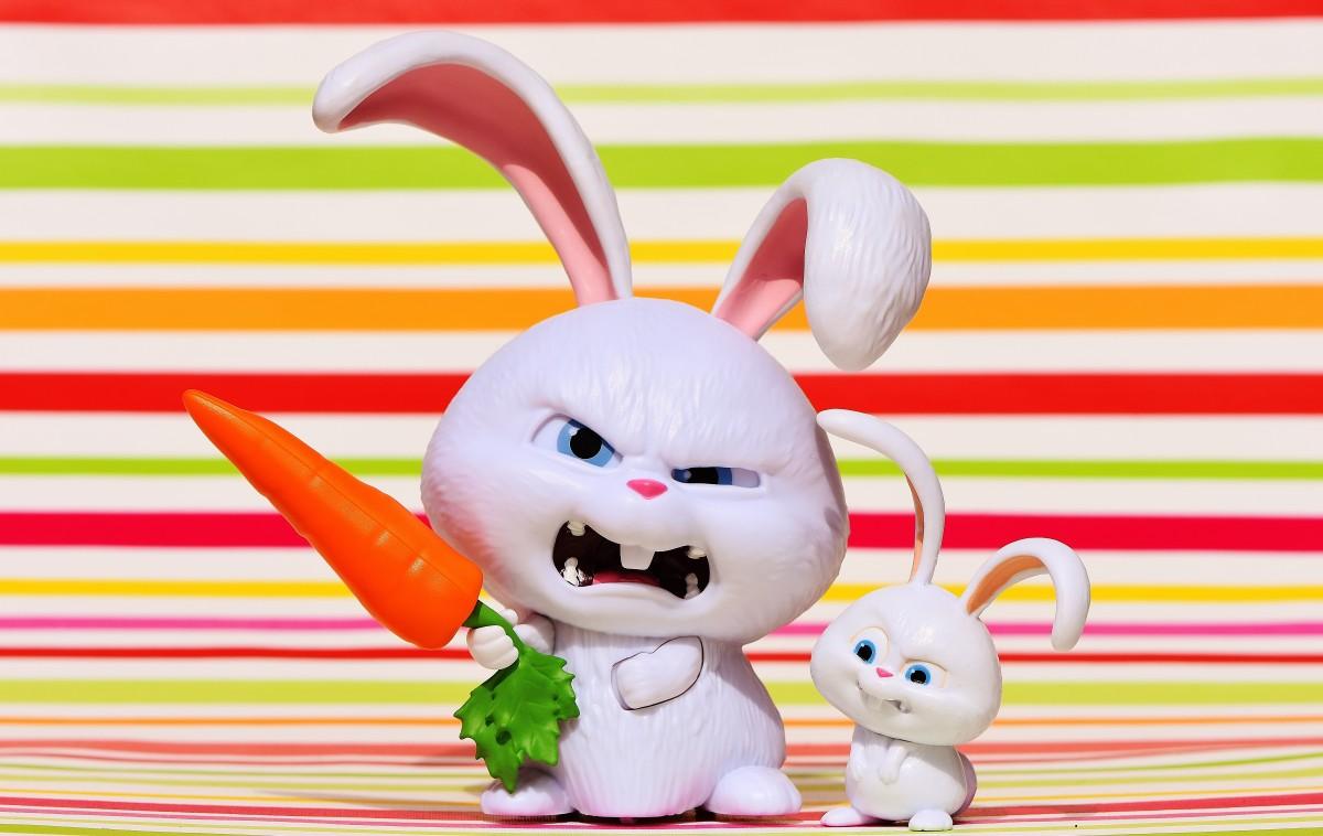 angry rabbits