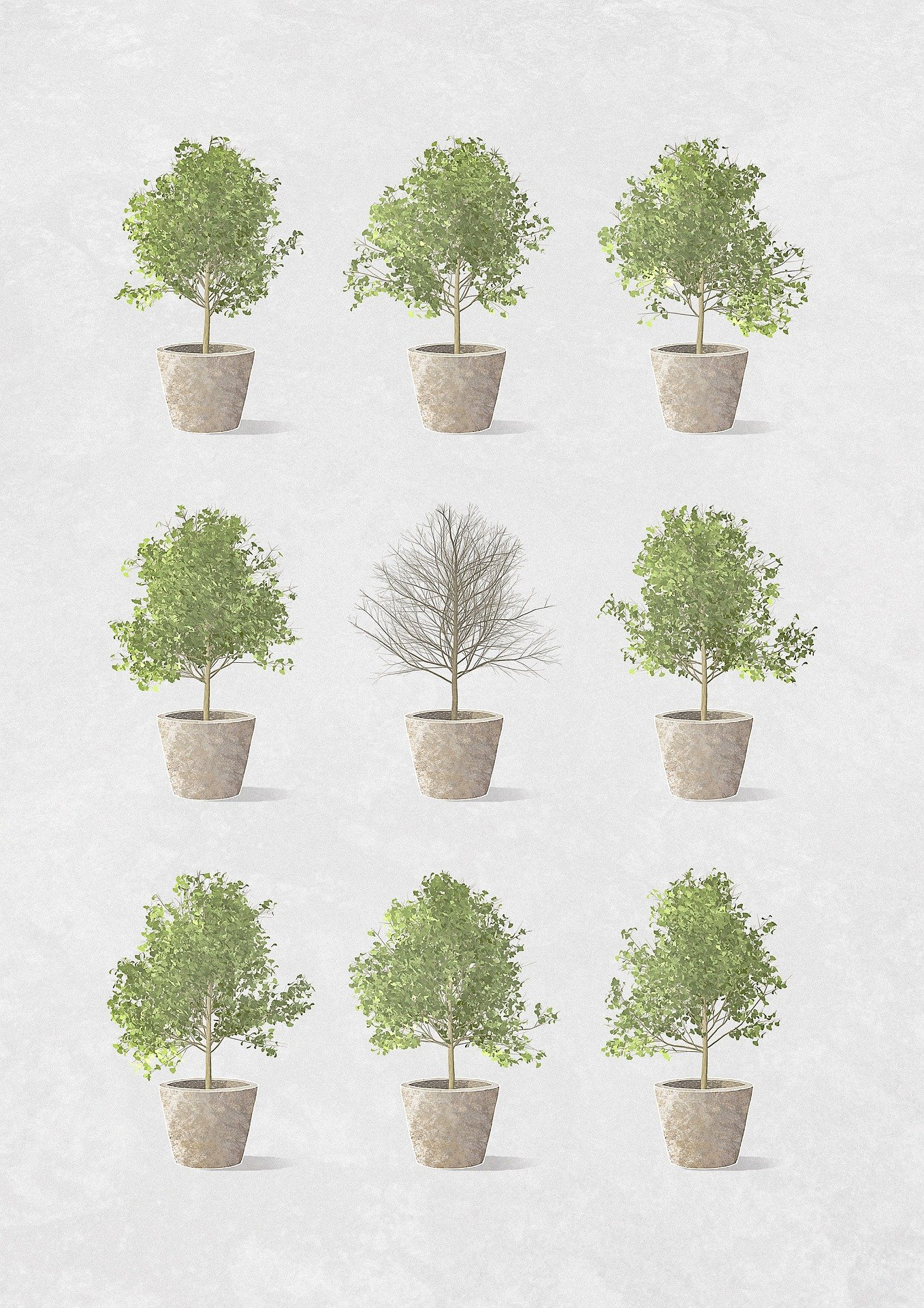 creativity plants 1357x1920 - Free image bank