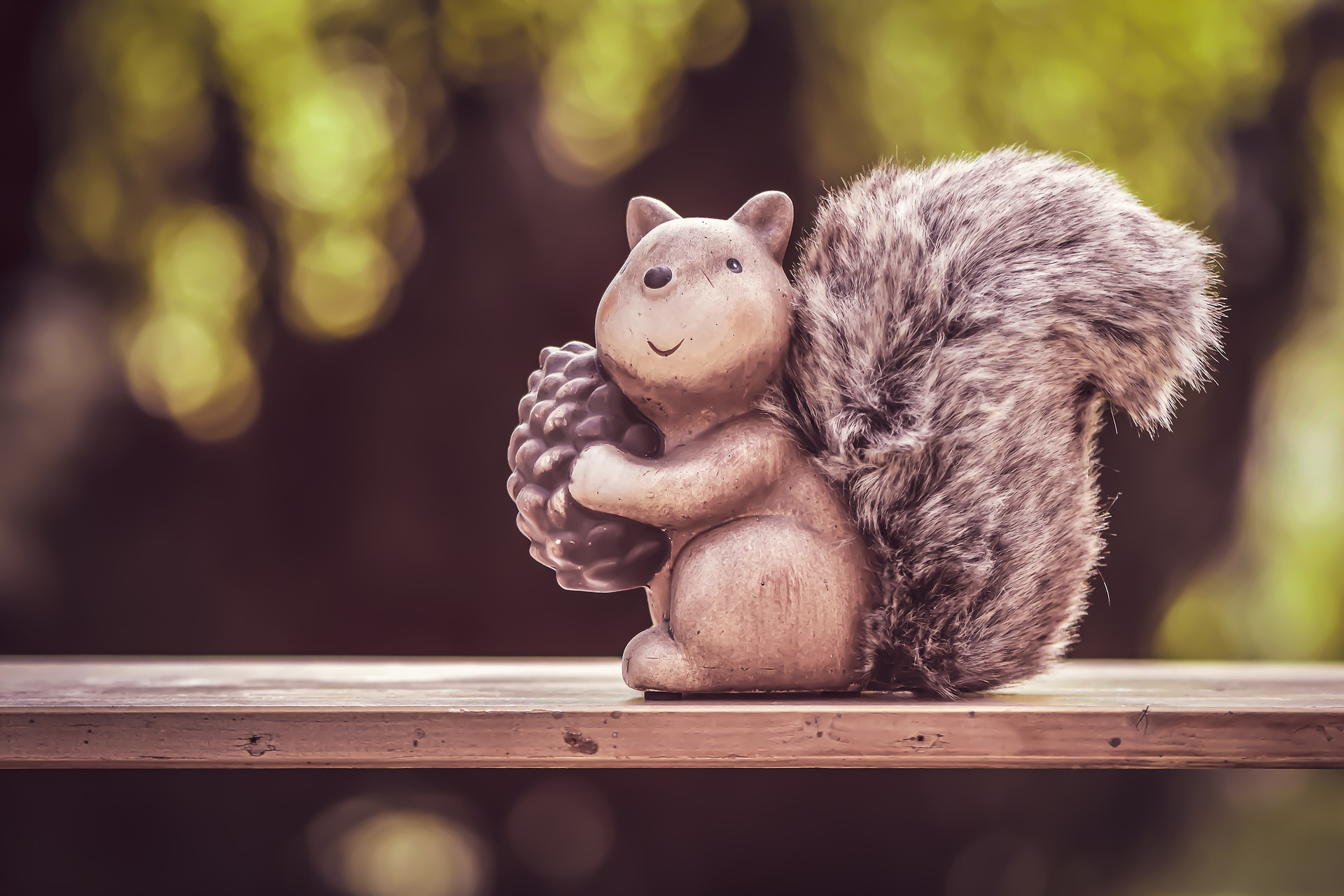 funny squirrel 1920x1280 - Free image bank